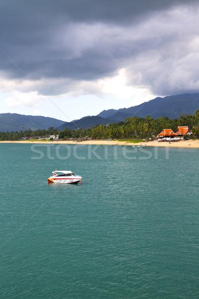 blue lagoon  stone in thailand kho tao bay rain Stock photo © lkpro
