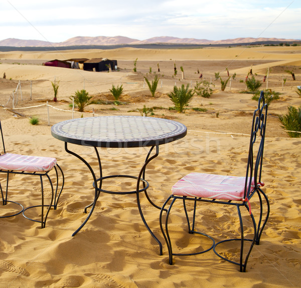 table and seat in desert  sahara morocco    africa yellow sand Stock photo © lkpro