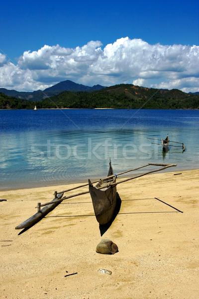 Boot palm rock steen tak kustlijn Stockfoto © lkpro