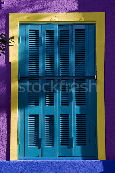 colored venetian blind and wall  Stock photo © lkpro