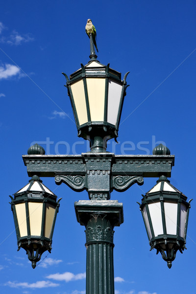 old green street lamp and parrot  Stock photo © lkpro