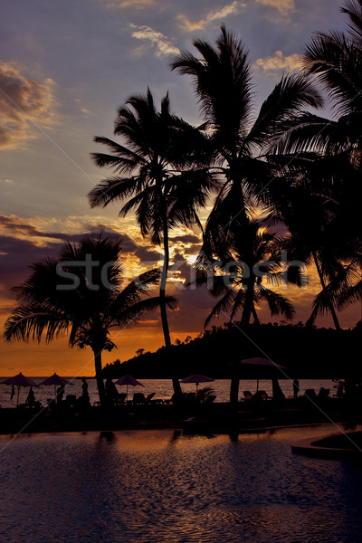 sunset in the pool in madagascar Stock photo © lkpro
