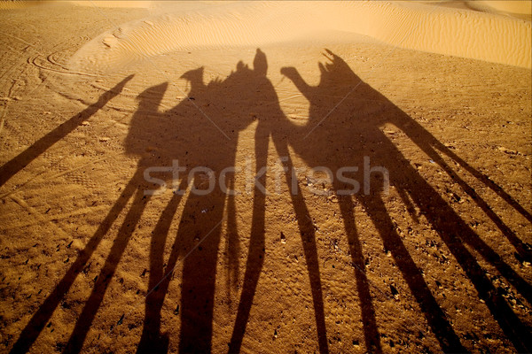砂漠 人 緑 黒 雲 白 ストックフォト © lkpro