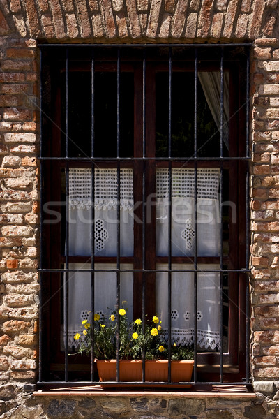 old window grate and yellow flower Stock photo © lkpro