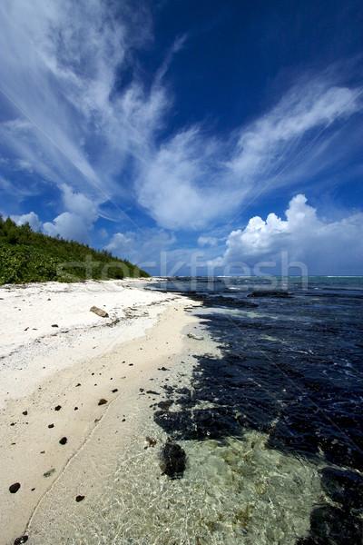 Plaj kayalar taşlar kaya taş su Stok fotoğraf © lkpro