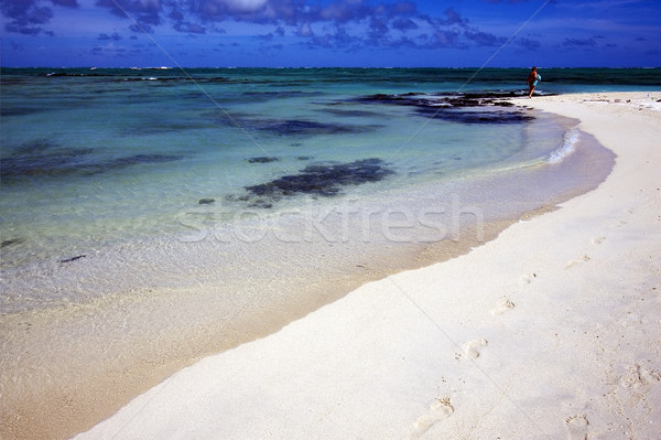 footstep in ile du cerfs mauritius Stock photo © lkpro