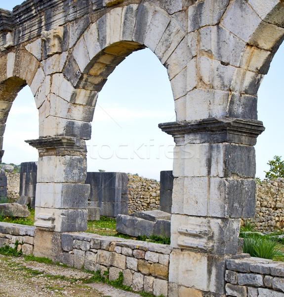 モロッコ アフリカ 古い ローマ ツリー 建設 ストックフォト © lkpro