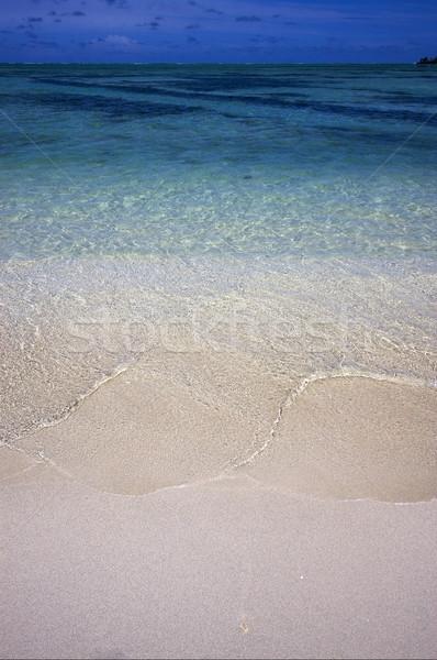 Plaży Mauritius wody morza zielone niebieski Zdjęcia stock © lkpro