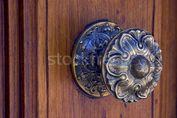 brass brown knocker and wood  door Stock photo © lkpro
