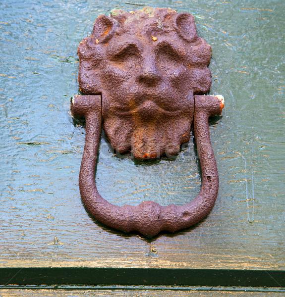 Abstrato latão marrom fechado madeira porta Foto stock © lkpro