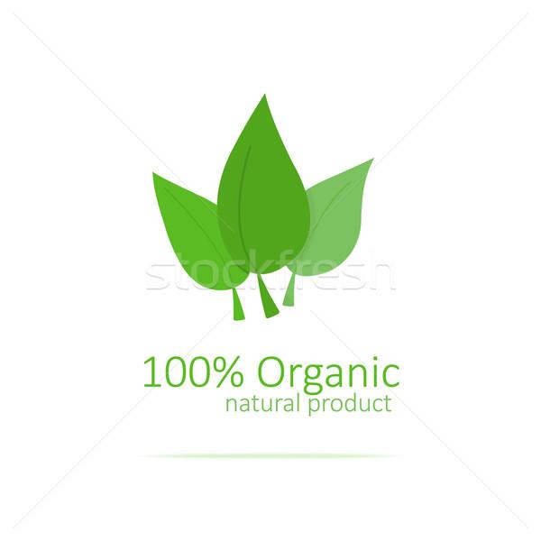Organikus logo természet levél energia élet Stock fotó © logoff