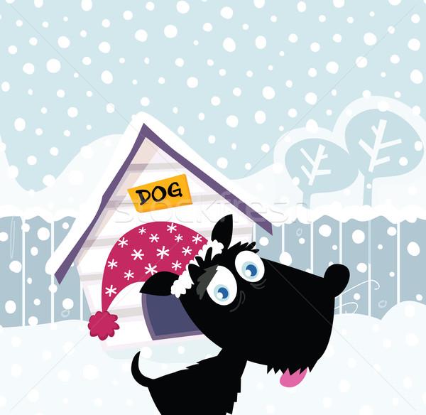 Funny Christmas Dog  Stock photo © lordalea