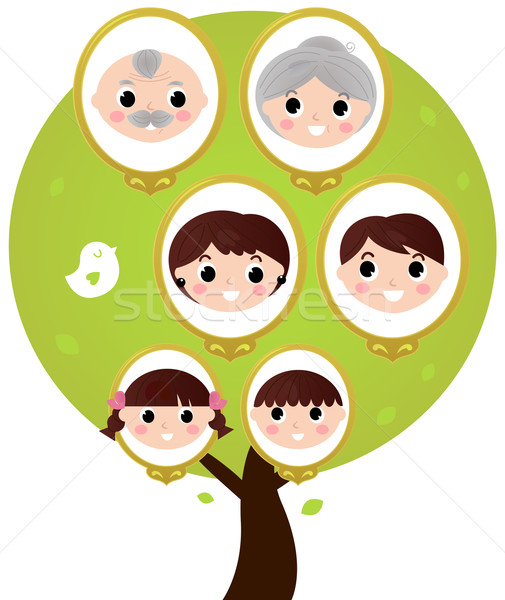 Cartoon generation family tree isolated on white Stock photo © lordalea