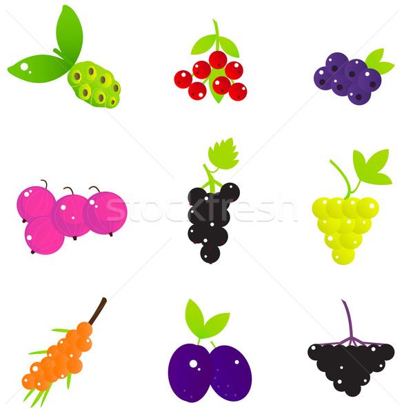 Fruits d'été baies isolé blanche fruits frais Photo stock © lordalea