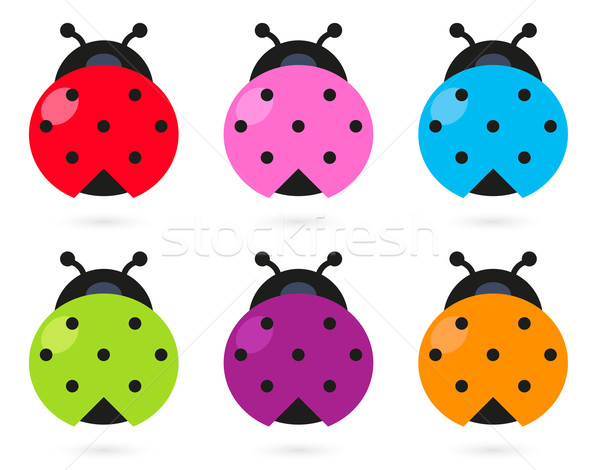 Cute colorful Ladybug set isolated on white Stock photo © lordalea