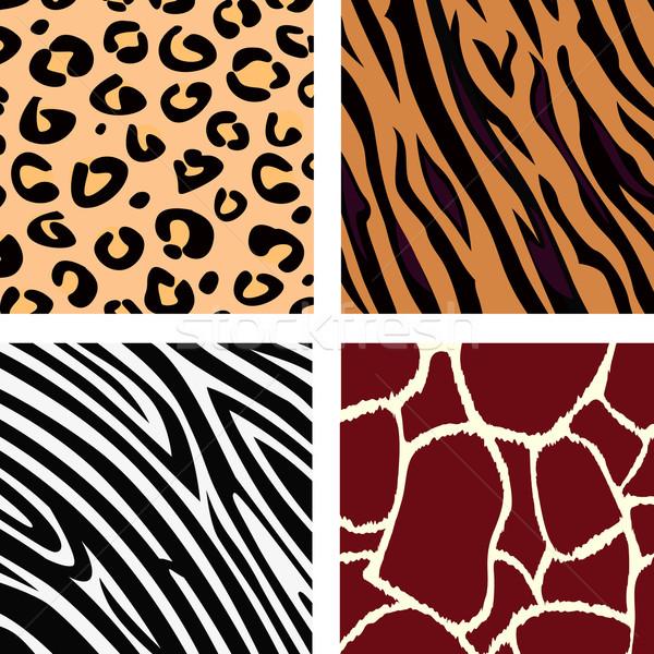 Stock photo: Animal Pattern - Tiger, Zebra, Giraffe, Leopard