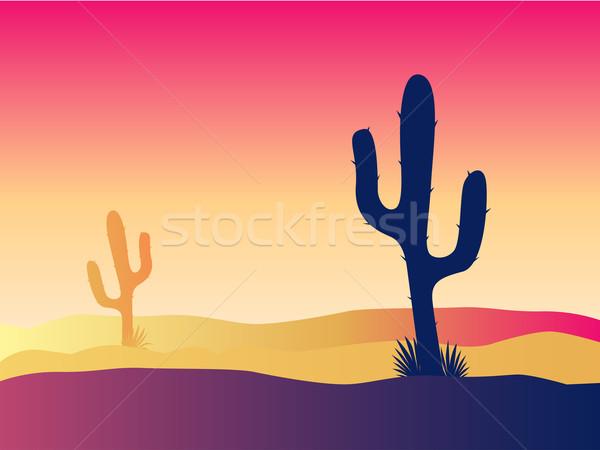 Cactus Desert Sunset  Stock photo © lordalea