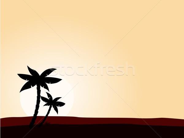 Deserto nascer do sol preto palmeira silhueta amarelo Foto stock © lordalea