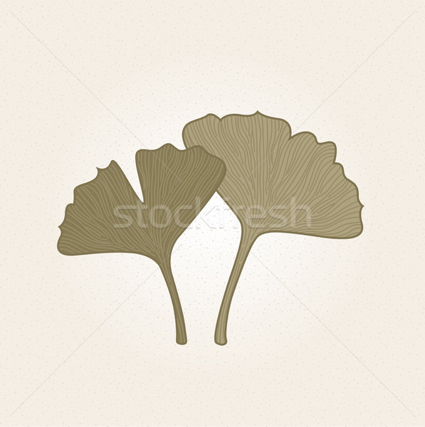 Stock photo: Retro hand drawn Gingko leaves isolated on brown background
