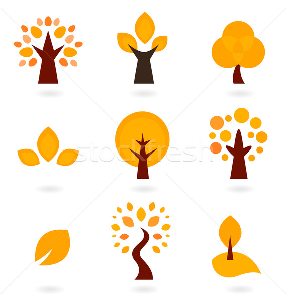 Stock photo: Autumn trees icons isolated on white ( orange )