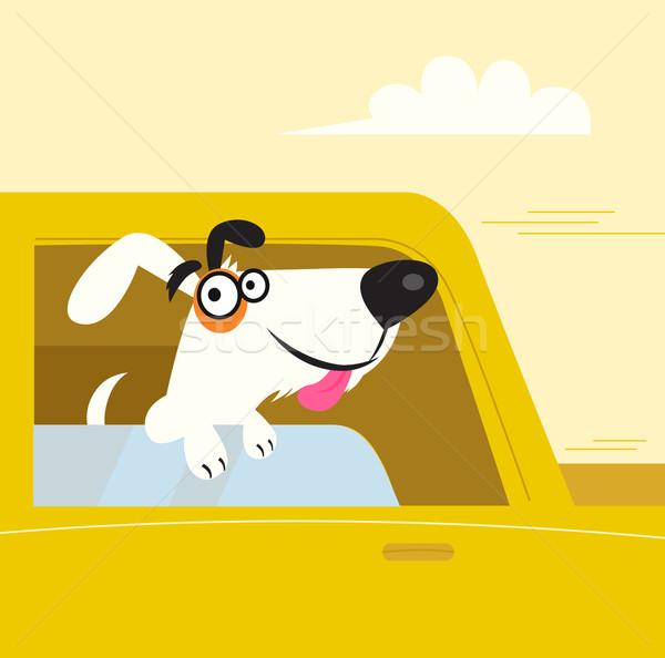 Stockfoto: Gelukkig · zwart · wit · hond · Geel · auto
