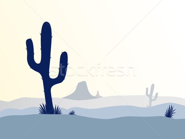 Cactus désert coucher du soleil scène usine montagnes Photo stock © lordalea