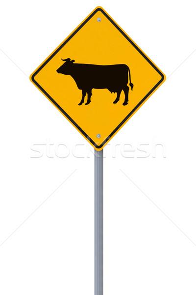 скота знак изолированный белый дороги Diamond Сток-фото © lorenzodelacosta