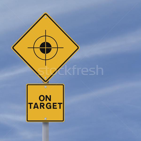 On Target  Stock photo © lorenzodelacosta