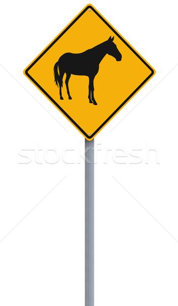 Year of the Horse  Stock photo © lorenzodelacosta