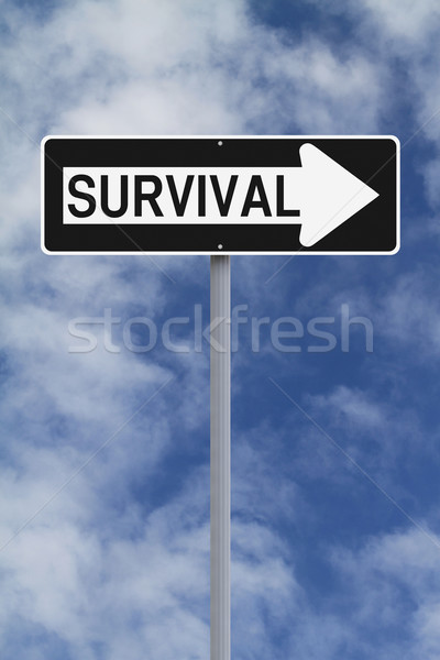 This Way To Survival  Stock photo © lorenzodelacosta