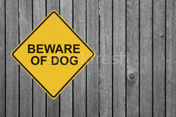 Beware of Dog! Stock photo © lorenzodelacosta