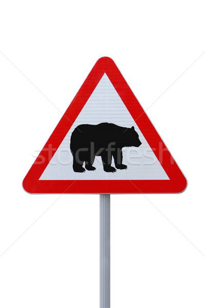 Bear Crossing Stock photo © lorenzodelacosta