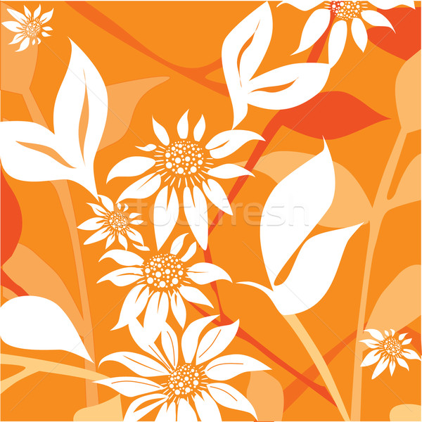 White flowers on an orange background vector Stock photo © lossik