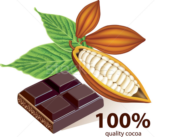 Vector cocoa beans with chocolate bar Stock photo © lossik