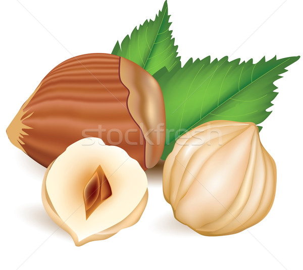 Hazelnuts with leaves. Stock photo © lossik