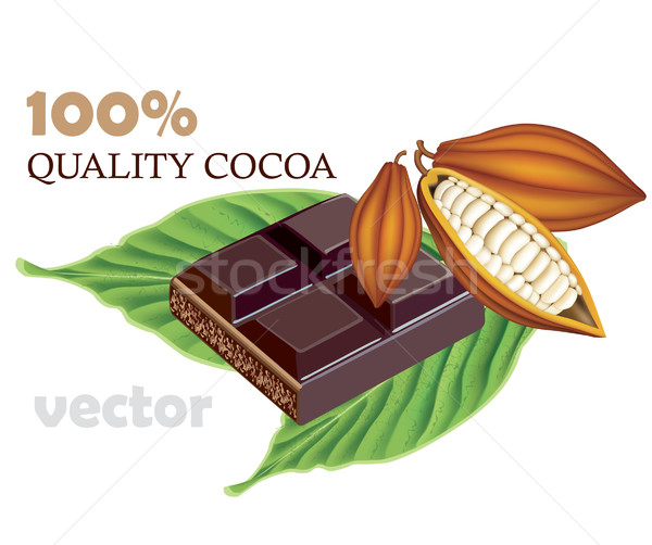 Cocoa beans with green With tile of black chocolate Stock photo © lossik
