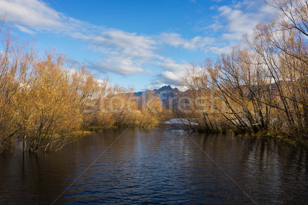 Glenorchy lagoon in New Zealand Stock photo © lostation