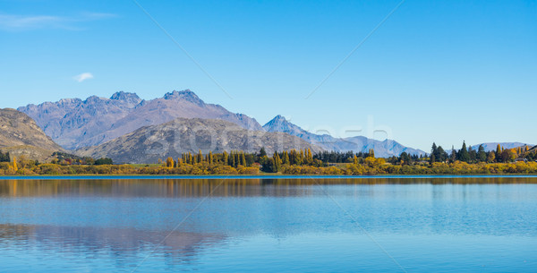 reflection on lake Hayes Stock photo © lostation