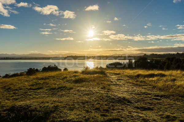 Sunrise landscape near Lake Te Anau Stock photo © lostation