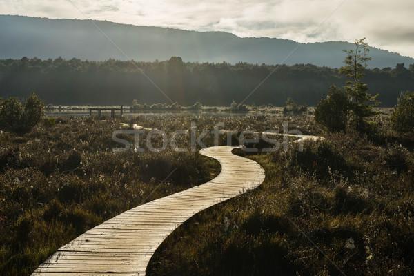 Path along the Kepler track Stock photo © lostation