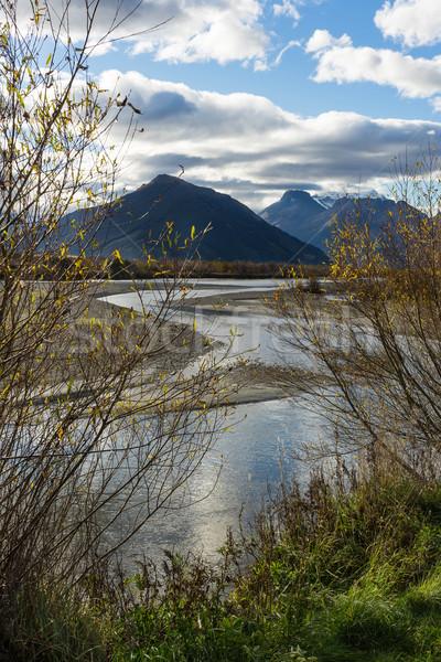 Nova Zelândia água madeira pôr do sol paisagem fundo Foto stock © lostation