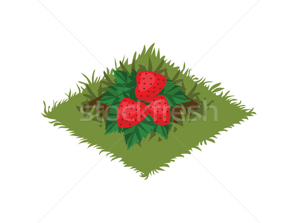 Izometrikus rajz gyümölcs kert ágy eper Stock fotó © Loud-Mango