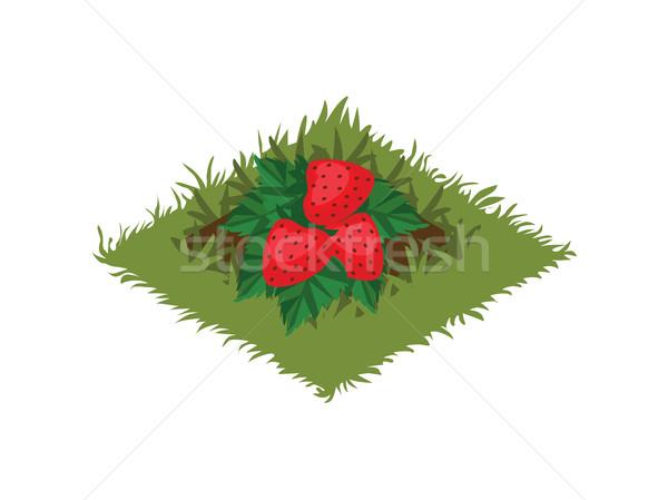 Karikatur Obst Garten Bett Erdbeere Stock foto © Loud-Mango
