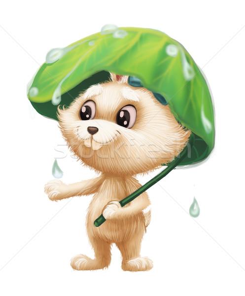 Cute bunny charakter maskotka Zdjęcia stock © Loud-Mango