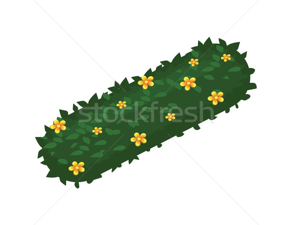 Isometric Cartoon Flower Bush Bed With Chamomiles - Game Element, Tileset Map Stock photo © Loud-Mango