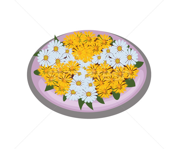 Isometric Cartoon Flower Bush Bed With Symmetrically Planted Yellow Daisies Stock photo © Loud-Mango