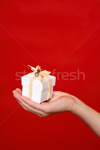 Aanwezig geschenk palm hand ingericht Rood Stockfoto © lovleah