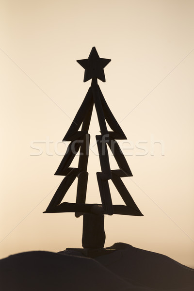 Driftwood Christmas tree silhouette sunrise Stock photo © lovleah