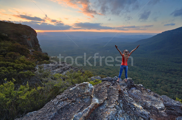 Andarilho magnífico montanha topo vale azul Foto stock © lovleah