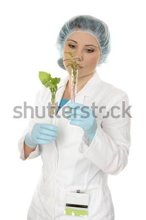 Agricultural scientist or botanist Stock photo © lovleah